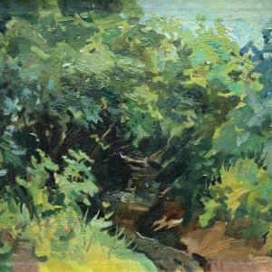 1 Чеботарь лесной ручей